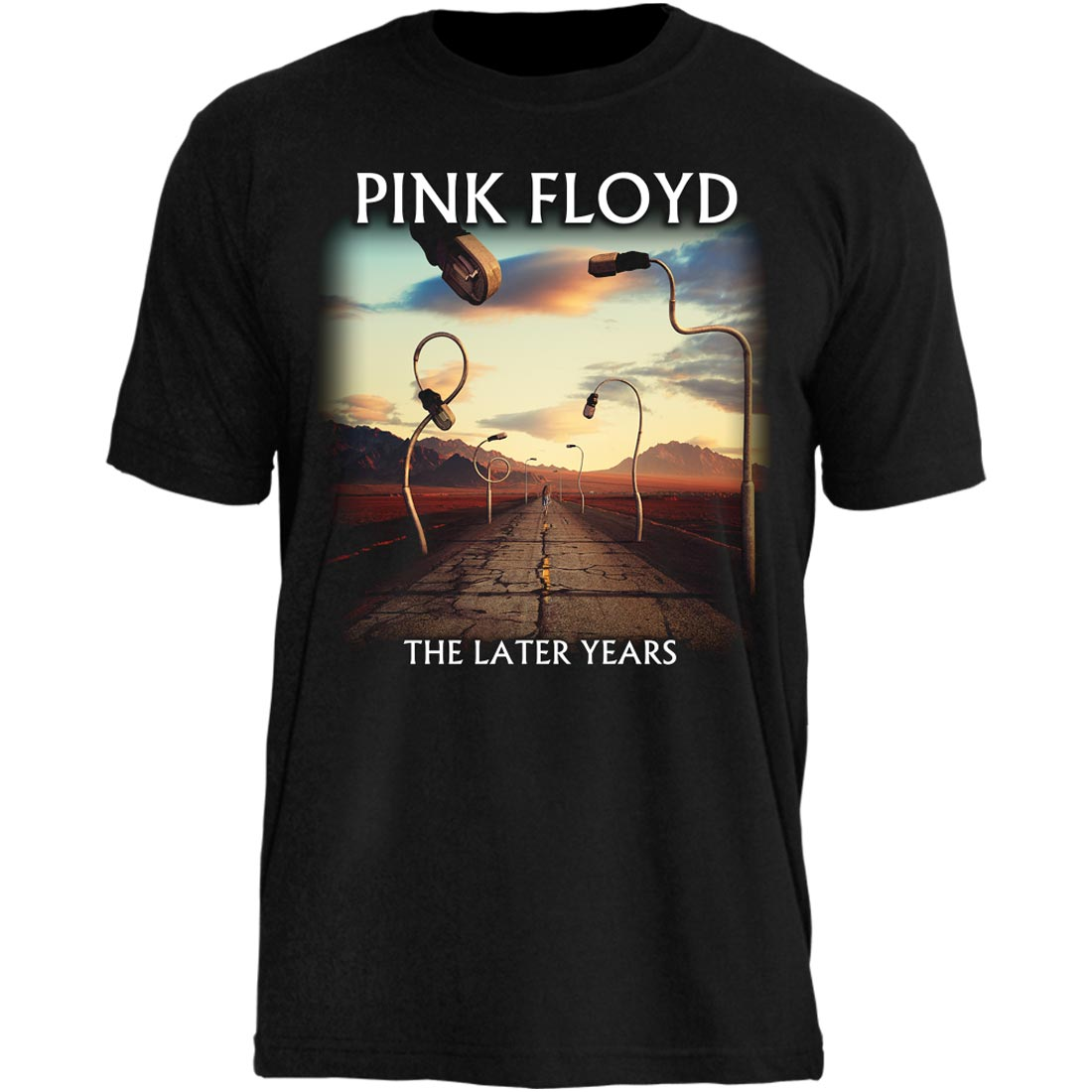 Camiseta Pink Floyd The Later Years